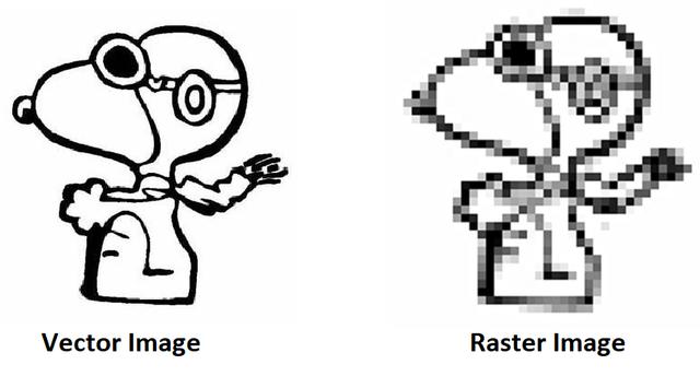 convert jpg to vector
