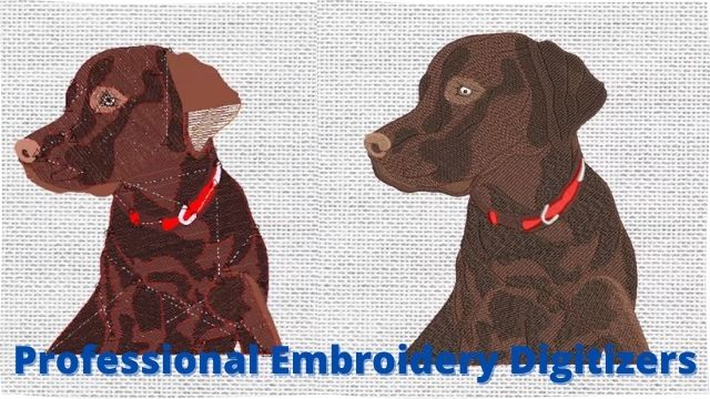 Professional Embroidery Digitizers